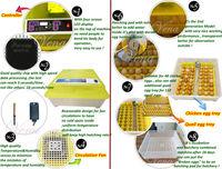 Инкубатор для куриных яиц Vena 48  VA-48