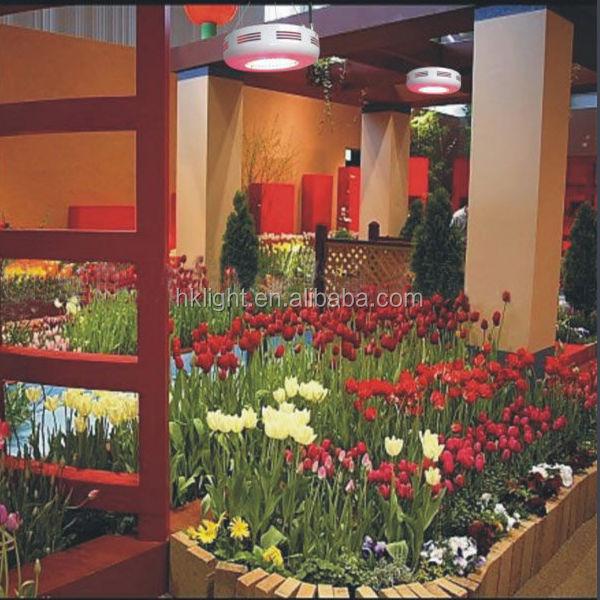 red grow lighting photo