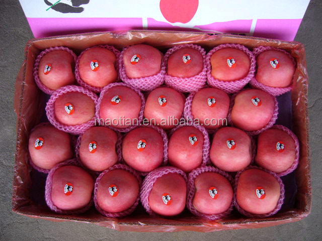 High quality Fresh Red Fuji Apple