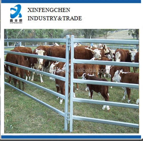 CattlePanel_5BarCattleRail.jpg
