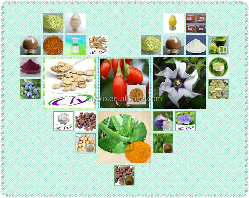 2014 best selling products!!! Herb Medicine for sex power enhance, Tongkat Ali Root