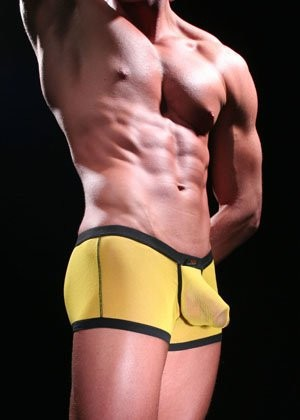Мужские боксеры WJ  Boxer