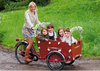 2015 hot sale Three Wheel Electric Bike Rickshaw Pedicab