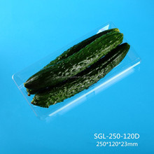rectangle PET plastic cucumber fruit vegetable packing tray