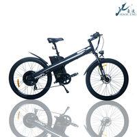Seagull,Best Seller motorcycle mag wheel,pegasus electric bicycle bike