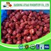 Frozen strawberry (B grade) for jam 2015 corp