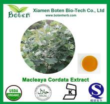 Chelerythrine 5%~50% Bocconia Cordata Extract