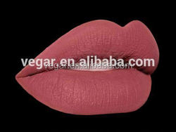 12pcs Long-lasting Matte lipgloss plastic lipgloss pencil