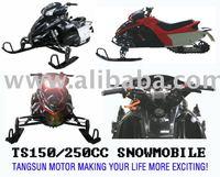 TS250-A snow mobile