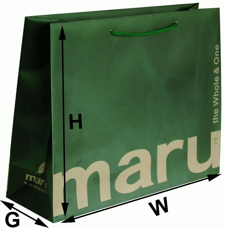 Eco-friendly gift shopping paper bags