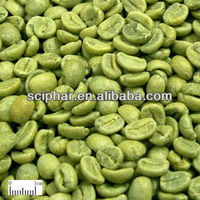 Green Coffee Bean Extract good quality plant factory