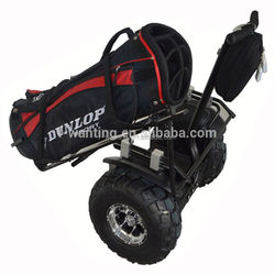2 wheel electric self balance scooter, electric chariot, personal transportation vehicle