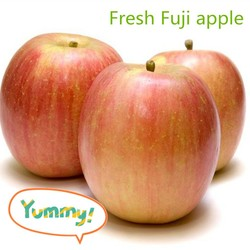 Red delicious sweet fresh Fuji apple