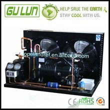 Air Cooled Condensing Unit For Cold Storage Room With Gulun Compressor
