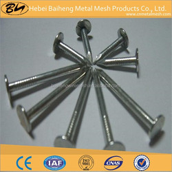 Steel common nails