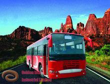 nuevo bus