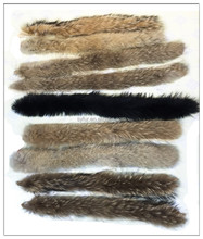 Lady or man fashion real raccoon dog fur strips and trimming for winter coat and jacket hat