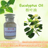 100% Natural and Pure Essential oil Eucalyptus oil with eucalyptol