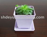 Plastic Small flower cup and saucer plant pot