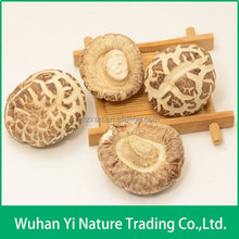 Nutrition and Health Dried Flower Mushroom from China