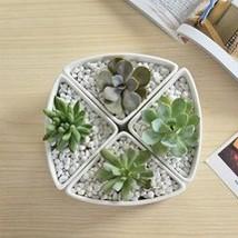 Adorno janela hexagon cerâmica branca vasos de interior para suculento