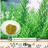 2015 HOE SALE Anti-cancer Rosemary Extract 30% Rosmarinic Acid/Rosemary Oleoresin Extraction