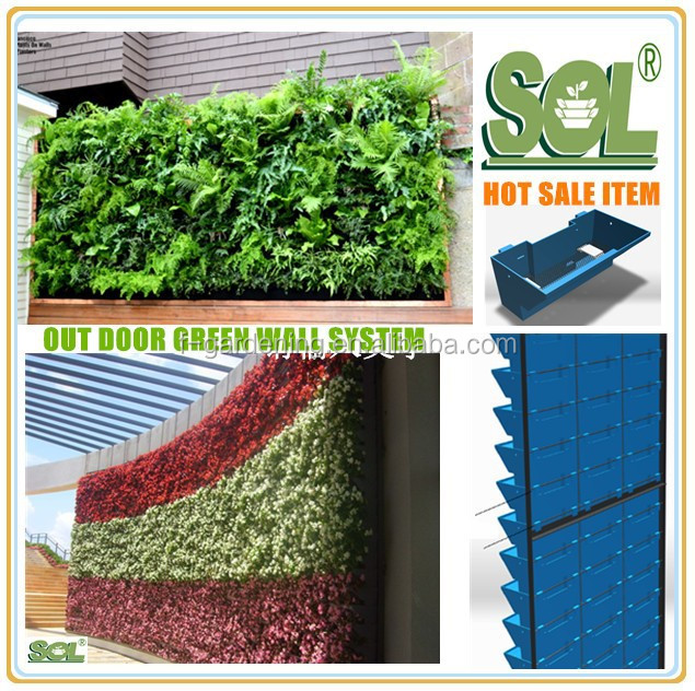 Living Wall Planter,Gardening Living Wall Indoor Living Wall - Buy ...