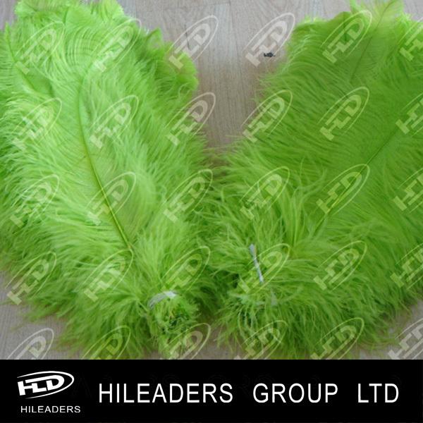ostrich feathers big (5)