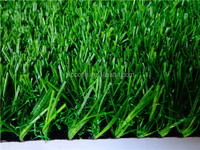 Hot selling high quality lowes sod grass