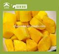 mejor venta de mango congelado