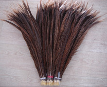 Hileaders Natural Golden Pheasant Feather