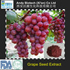 Pure Natural Plant Extract Grape seed P.E. 90% Proanthocyanidins