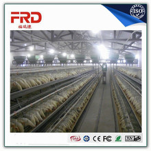 FRD-Best sale egg chicken house design for layer made in China