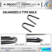 Iron nail factory polished/galvanized common/diamond sharp U fence nail