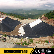 Farm Waterproof Material Geomembrane Pond Liner for Sale