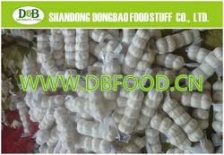 2015 new crop jinxiang white garlic 2015 new crop garlic garlic supplier