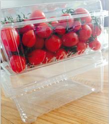 PET plastic quail egg container/tray/pallet manufacturer