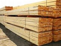 Poplar sawn timber and Lumber KD - S4S Grade and European Logs