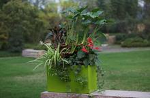 Smart Plastic rose flower artificial plant pots