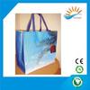 foldable non woven bag/foldable pp non woven bag/colorful printing pp non woven bag