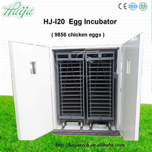 large capacity egg incubator Competitive Price poultry incubator machine from factory / egg incubator machine