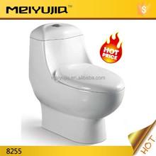 South American design bathroom dual flush ceramic siphonic toilet