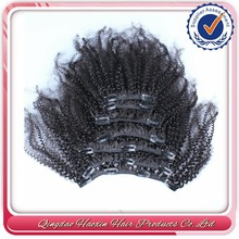 Afro kinky curly natural human hair clip in hair extensions for african american