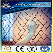 Home and Garden Products Metal Fencing/ Wire Mesh Fence China Supplier