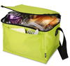 food delivery promotional cooler bag