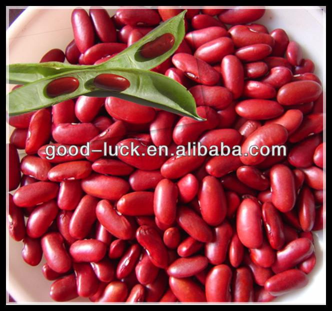2014 محصول الفول الأحمر البريطاني الكلى، الظلام الفاصوليا الحمراء