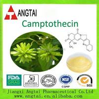 Manufacturer Plant cancer drugs Camptothecin 99%
