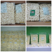 Peeled Vacuum Packed Garlic Cloves for Sale