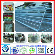 china manufacturer poultry farming chicken cage design/drinking water system poultry farm design