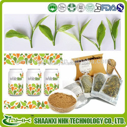 Natural Hot sale White Tea Extract,High quality White Tea Extract powder